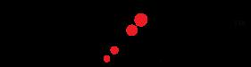 LEXAR-Logo